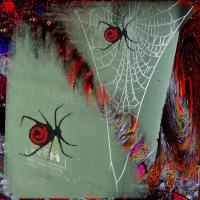 Spiders 001
