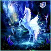 Unicorn Competes with Fairies For Space
