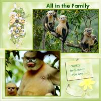 Tonkin Snubnosed Monkeys