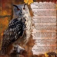poem *What Sees the Owl*