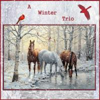 A Winter Horse Trio