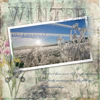Our Winter