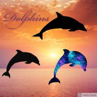 Silhouette dolphins